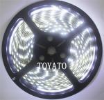 LED cтрічка 3528, холодний білий колір,чорна основа, вологозахищена IP65 (5см)